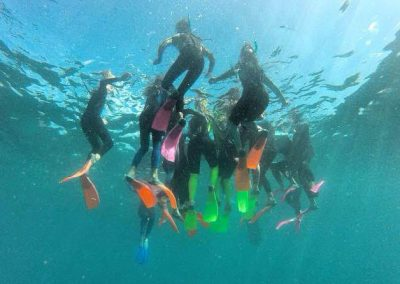 snorkelling for education